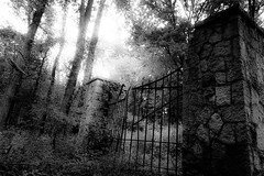 What Lay Beyond the Ominous Gate (mns_mike) Tags: ominous gate homestead bw a6000 abandoned indiana