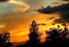 IMG_6687 (CLloyd Photos) Tags: sunset sky creation clouds trees orange