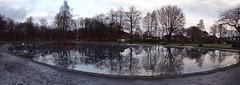 Sweep (Bricheno) Tags: park trees panorama ice reflections scotland frozen pond escocia swans szkocja renfrew schottland robertsonpark scozia cosse  esccia   bricheno scoia