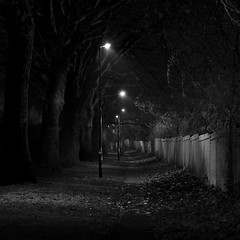 The Winter Fence Line: Earlsdon Coventry West Midlands UK (Kangaroobie... .home) Tags: uk bw mist fog nightlight coventry westmidlands fenceline earlsdon