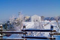 Winter wonderland at Hyundai Sungwoo Resort, South Korea (UweBKK (α 77 on )) Tags: winter mountain snow ski ice sport sony south korea resort alpha dslr hyundai 550 winterbeauty wonju gangwon sungwoo