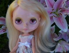 My little petal