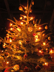 Merry Christmas (Habub3) Tags: christmas winter light canon weihnachten licht search powershot weihnachtsbaum 2012 g12 habub3