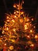 Merry Christmas (Habub3) Tags: christmas winter light canon weihnachten licht search powershot weihnachtsbaum 2012 g12 habub3
