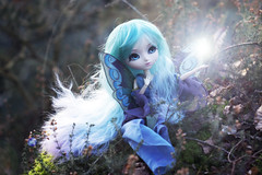 Faeries (Valrie Busymum) Tags: doll fairy groove pullip obitsu rewigged rechipped celsiy busymum