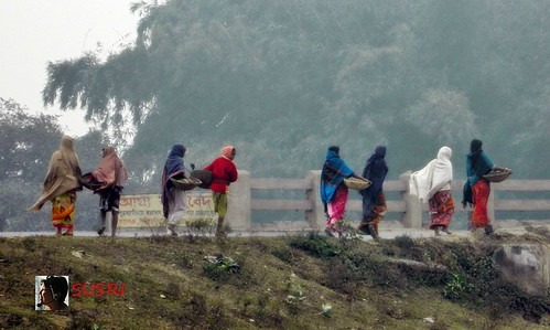 Village women are going to crop field in cold winter morning