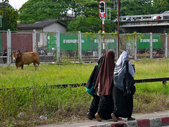 Hat Yai stroll 263 (oznasia) Tags: thailand lumix october asia southeastasia cattle hijab panasonic g2 johnstory niqab 1012 2012 hatyai js63 khimar haadyai songkla hadyai lumixg   oznasia leicadgmacroelmarit45mmf28