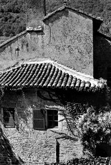 Old House, Dordogne, France (Pictures from the Ghost Garden) Tags: windows blackandwhite bw france film window monochrome 35mm mono blackwhite olympus om1 blancetnoir