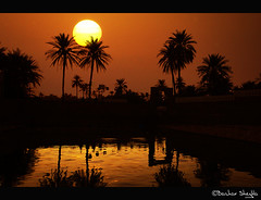 Ain El-Faras ! (Bashar Shglila) Tags: new light sunset sun lake sahara water silhouette desert year palm oasis  ghadames    2013      lbya ghasamis