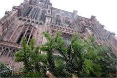 the cathedral and the rain (cecile ▲) Tags: wood city winter sky france cold tree beautiful rain landscape december village cathedral medieval strasbourg alsace chalet baccarat luscious topwn