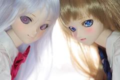 _MG_5721 (wes00276) Tags: doll dollfiedream 5dmk2