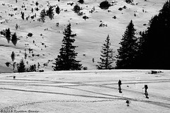 Rhodope Mountains (Tsvetan Banev) Tags: winter mountain snow mountains skiing bulgaria balkans    rhodope  rhodopemountains