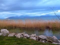 Lago di Garda - Sirmione (iReNe_87) Tags: lake montagne lago garda rocks roccia sassi prato sirmione veneto spighe paronama