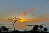 Fingal Heads Sunrise (Nolan White) Tags: ocean sunrise australia nsw newsouthwales northernrivers fingalheads