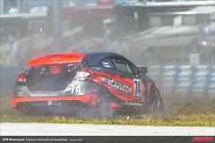 DIS-CTSCC-Race-2013198
