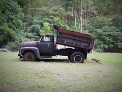 DUMP (photography_isn't_terrorism) Tags: ih internationalharvester dumptruck antiquetruck rural