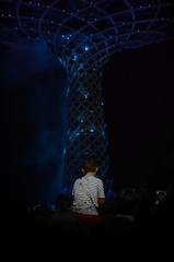 [ Aspettative - Expectations ] DSC_0190.2.jinkoll (jinkoll) Tags: street people boy kid child back lights night dark blue expo2015 milan milano show performance crowd apart tree architecture sit sitting seated