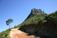 IMG_9849 (Couchabenteurer) Tags: lionshead capetown southafrica sdafrika kapstadt