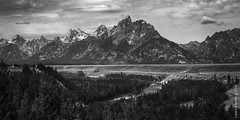 Snake River Panoramic (Luke Hertzfeld) Tags: grand teton national park black white anniversary america service wyoming west river mountains peak trees lodge pole nature outdoors wild ansel adams tribute plains geology tectonic rock snow ice peaks
