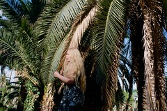 Jardins de Mossn Costa i Llobera (amanda aura) Tags: film barcelona spain olympusom1 friend tree