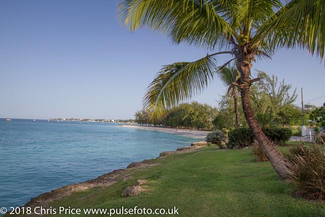 Miami Beach, Oistins