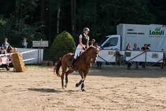 DSC01944_s (AndiP66) Tags: blau aespli derby hindelbank springen 2016 pferd horse schweiz switzerland kantonbern cantonberne concours wettbewerb horsejumping springreiten pferdespringen equestrian sports pferdesport sport martinameyer grueb wolhusen luzern sony sonyalpha 77markii 77ii 77m2 a77ii alpha ilca77m2 slta77ii sony70400mm f456 sony70400mmf456gssmii sal70400g2 andreaspeters bern ch september