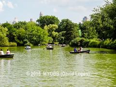 NYC Central Park 2014-8100382 (myobb (David Lopes)) Tags: calvertvaux centralpark em1 fredericklawolmsted manhattan nyc newyork newyorkcity omd olympus usa day green nature park summer