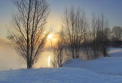 a magical morning (Foto Dominic) Tags: morning trees winter light mist fog sunrise licht nevel bomen zon ochtend ramsel vijver zonsopgang photosandcalendar natureselegantshots panoramafotogrfico mygearandme mygearandmepremium mygearandmebronze mygearandmesilver mygearandmegold flickrsportal mygearandmeplatinum mygearandmediamond photographyforrecreationeliteclub fotodominic rememberthatmomentlevel4 rememberthatmomentlevel1 rememberthatmomentlevel2 rememberthatmomentlevel3 rememberthatmomentlevel5 rememberthatmomentlevel6 vigilantphotographersunite vpu2 vpu3 vpu4 vpu5 vpu6 vpu7 vpu8 vpu9 vpu10 photographyforrecreationclassic