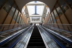 Tokyo Teleport Station (A. Wee) Tags: station japan tokyo escalator   odaiba teleport