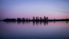 Same Place, Different Sky 3 (December-Skies) Tags: leica sunset sea reflection water silhouette night lumix f14 richmond panasonic clear summilux steveston dg 25mm gx1