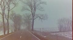 dutch winter (72) (bertknot) Tags: winter dutchwinter dewinter winterinholland winterinthenetherlands hollandsewinter winterinnederlanddutchwinter