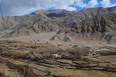View from Chemrey Monastery, Ladakh (gorbulas_sandybanks) Tags: india leh ladakh ind jammuandkashmir chimre chemreygompa chemreymonastery 6nov2012