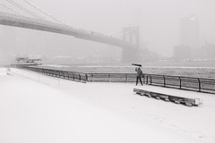(Barry Yanowitz) Tags: nyc newyorkcity bridge blackandwhite bw snow ny newyork weather brooklyn blackwhite flickr bridges brooklynbridge blizzard nycity jeannouvel 718 brooklynbridgepark empirefultonferry janescarousel janewalentas mainstreetsection