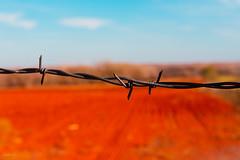 di rosso spinato (miglio) Tags: usa america wire route66 roadtrip 7d barbedwire coasttocoast filospinato canoneos7d efs1585mmf3556isusm