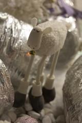 340/365 Belen moderno (alberto rincon garcia) Tags: street urban canon sheep teddy urbana showcase belen oveja peluche escaparate callejera sigma247028 60d