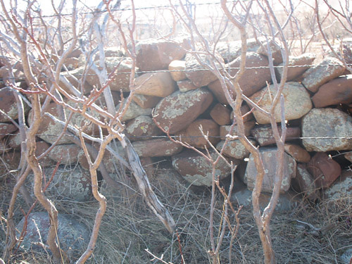 Photo - Rock Wall near South Mesa Trailhead
