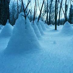Snow Cone Village