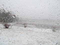 all is white on the neighborhood bog (saudades1000) Tags: white snow cold window landscape countryside hiver paisagem gotas neve inverno frio