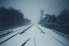apparition (ginaballerina.) Tags: nyc snow train traintracks figure mysterious 365 apparition 365project ginaballerina ginavasquez