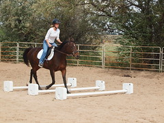 E and Mae, Mae's first cavalletti (lostinfog) Tags: colorado mare mae e30 2012 cavalletti 201209 riderem
