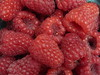 """Red Shiny Raspberries • <a style=""""font-size:0.8em;"""" href=""""https://www.flickr.com/photos/7877146@N06/8581968145/"""" target=""""_blank"""">View on Flickr</a>"""