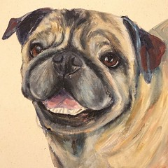 "I'm working on Otis, the Pug, and loving all these wrinkles! (Painted Paws Studio) Tags: charity family rescue dog pet art beagle cat painting square sketch artwork lab drawing adorable pug bull dachshund weimaraner squareformat basset donation sharpie paws adopted adopt viszla portrait"" art"" pittie ""great bull"" shepherd"" retriever"" ""custom ""labrador ""dog ""border ""german ""pit ""russian painting"" collie"" blue"" studio"" ""cat ""painted ""pet artwork"" paintedpaws ""lillian iphoneography dane"" paws"" instagramapp uploaded:by=instagram aguinaga"""