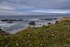 Pescadero Beach, CA (HavCanon.WillTravel) Tags: ocean california plant ice beach clouds rocks waves pacific hdr pescadero fdrtools canon5dmkii