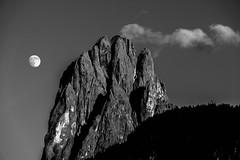 dawn (moltofredo) Tags: bw black white sw schwarz weiss noiretblanc monochrome