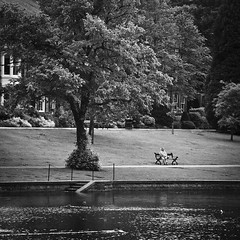 Matt_Langton0572 (matt_langton70) Tags: nikond90 lightroom nikefex silverefex sitting lonetree tree loneman bench water park pond streetphotography street mono monochrome