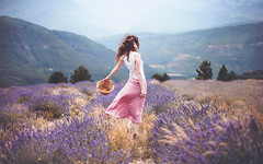 Picking the dreams by the root (Sirliss) Tags: sirliss lavender purple summer flowers picking mountains pink