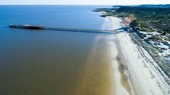 Muelle de El Calabrs (Marcelo Campi) Tags: pier muelle architecture aerial dji urbanexploration sand beach river trees forest sun sky