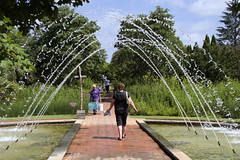 IMG_0034_v1 (TheWarners) Tags: danielstowebotanicalgarden stowebotanicalgarden horticulture belmont nc northcarolina gardens joanne