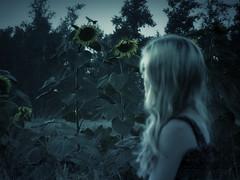 Silent Witnesses (svetlanaephimenko) Tags: dark darkness summer girl portrait nature