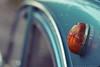 Blinker Citroen 2cv6 (g e g e n l i c h t) Tags: citroen 2cv ente automobil fahrzeug historisch french blinker leuchte schärfentiefe dof bokeh summicronr 50mm lumixgx7 offenblende maximumaperture